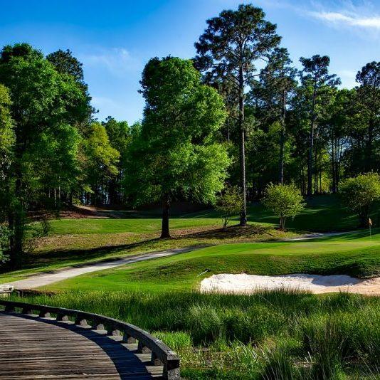 magnolia-golf-course-1613270_1280